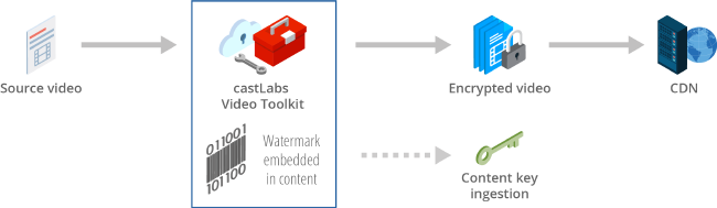 Forensic Watermarking Workflow